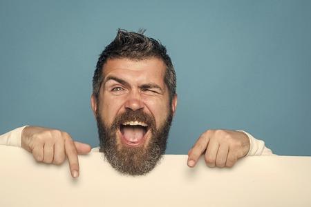 Guy or bearded man on blue background.