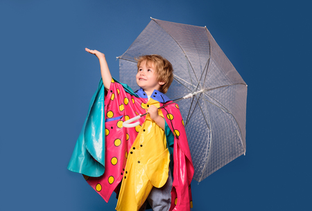 Kid having fun with Leaf fall. Cheerful boy in raincoat with colorful umbrella. Handsome little guy in preparing for Autumn. Sale for entire autumn collection, incredible discounts. Stok Fotoğraf