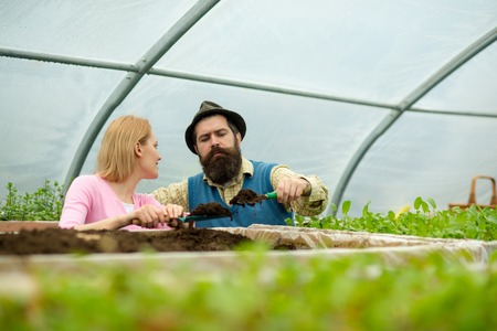 soil enrichment. soil enrichment with organic fertile. soil enrichment concept. soil enrichment by couple of gardeners. living a green life