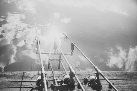 Carp fishing rods Stock Photo