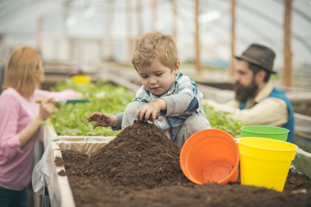 child in greenhouse. small child in greenhouse. child in greenhouse with parents. child work in greenhouse. kid gardening