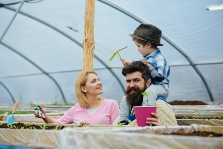 seedbed. family working in seedbed. modern seedbed. seedbed or greenhouse workers. loving their business Stok Fotoğraf