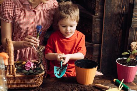 Spring concept. Little child plant flower in spring. Boy potting plant, spring. Spring is here.