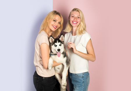 Its hard being this perfect. Sexy women with dog pet. Happy girls with sensual look. Pretty women hold pedigree dog. Husky dog with blue eyes and wolf like look. Happy sisters with family pet.