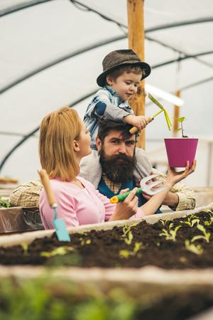 fertilizer. soil fertilizer production. fertilizer for soil. soil fertilizer in greenhouse. new life Stok Fotoğraf - 115010871