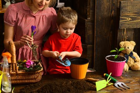 Fertilizer concept. Little child put fertilizer in pot. Fertilizer for new green plant in soil. Organic fertilizer.