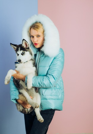 I cant keep my paws off you. Pretty woman hold pedigree dog. Husky dog with blue eyes and wolf like look. Happy model with family pet. Sexy woman with dog pet. Happy girl with sensual look.