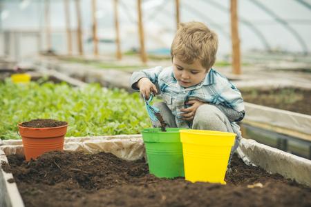 garden exhibition. garden exhibition in modern greenhouse. master class on garden exhibition. garden exhibition with small boy gardener. working in green environment Foto de archivo - 115475115