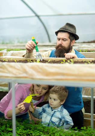 cultivation. agricultural cultivation. cultivation on family farm. greenhouse cultivation. enjoying their work Stock Photo