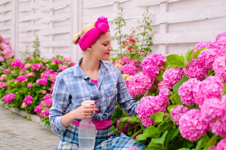 woman care of flowers in garden. hydrangea. Spring and summer. Flower care and watering. soils and fertilizers. happy woman gardener with flowers. Greenhouse flowers. Beauty gardening.