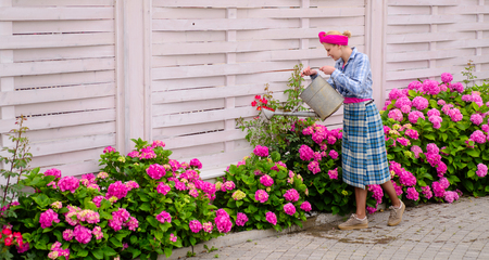 woman care of flowers in garden. hydrangea. Spring and summer. Flower care and watering. soils and fertilizers. happy woman gardener with flowers. Greenhouse flowers. Working in green environment.