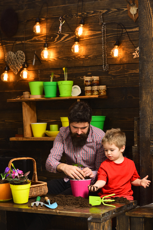 Father and son. happy gardeners with spring flowers. Flower care watering. Soil fertilizers. bearded man and little boy child love nature. Family day. Greenhouse. I love flowers. Foto de archivo - 118380823