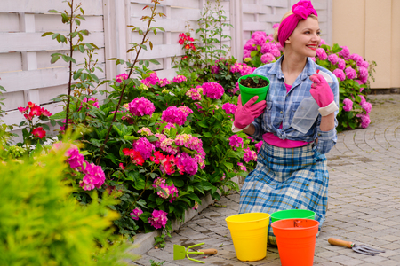 Greenhouse flowers. hydrangea. Spring and summer. happy woman gardener with flowers. Flower care and watering. soils and fertilizers. woman care of flowers in garden. Best service for you.