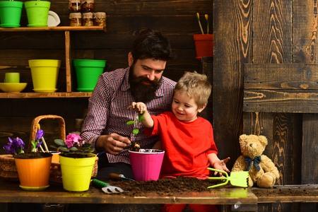 Father and son. Family day. Greenhouse. bearded man and little boy child love nature. happy gardeners with spring flowers. Flower care watering. Soil fertilizers. Live brightly. Foto de archivo - 116279937