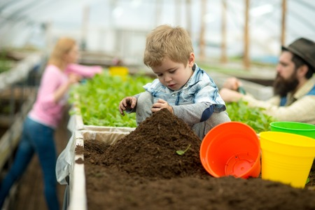 pure soil. pure soil enrichment. small boy work with pure soil. pure soil in greenhouse. gardening