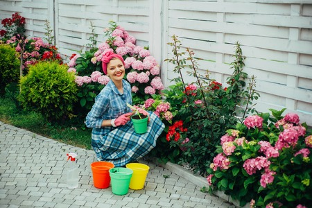 happy woman gardener with flowers. Greenhouse flowers. Flower care and watering. soils and fertilizers. hydrangea. Spring and summer. woman care of flowers in garden. Think green. Imagens
