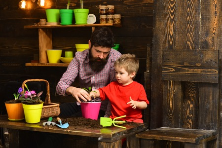 bearded man and little boy child love nature. happy gardeners with spring flowers. Flower care watering. Soil fertilizers. Family day. Greenhouse. Father and son. family in flowers. Foto de archivo - 118684709