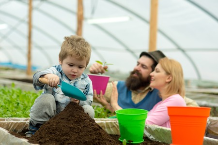 rich land. land rich with fertile. rich land for growing plants. family in greenhouse work with rich land. family gardening Banco de Imagens