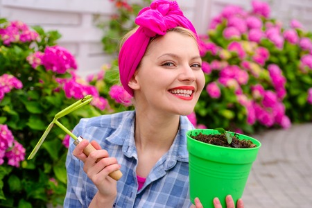 woman care of flowers in garden. happy woman gardener with flowers. hydrangea. Spring and summer. Flower care and watering. soils and fertilizers. Greenhouse flowers. Do everything with love.