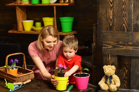 Summer concept. Mother and child plant flower in summer. Mother and son potting summer plant. Summer fun just began. Stock fotó