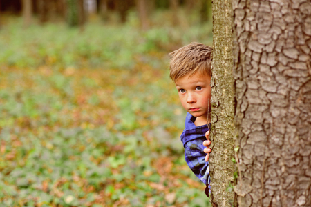 Its a little scary. Little boy hide behind tree. Small boy in scary forest. Little child play scary games. I like being scared