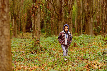 Autumn fills the air. Child in autumn forest. Adorable child walk in forest. Child boy play on autumn day. I like autumn