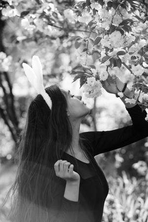 girl with rosy bunny ears smelling sakura flowers in spring 版權商用圖片