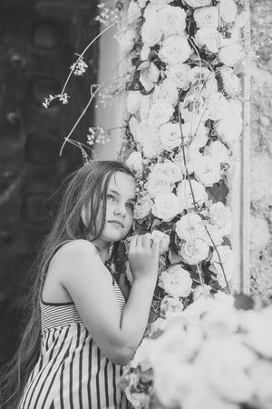 Little girl smell rose flowers at spring or summer day Stockfoto