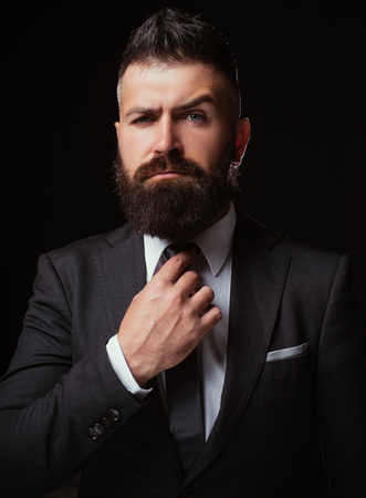 Bow-tie trend. Man suit fashion. Business confident. Meeting suit. Businessman in dark grey suit. Man in classic suit, shirt and tie.