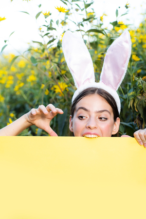 Bunny rabbit ears costume. Surprised bunny couple wearing bunny ears, copy space. Smile easter.