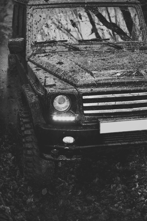Dirty offroad car, close up. SUV covered with mud on path covered with leaves. Black crossover with lights turned on, driving with cloud of smoke. 4x4 racing concept. 写真素材