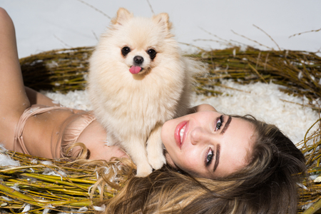 Sexy young model girl with perfect body in fashionable lace lingerie lying in a huge nest, full of feather with dog. Magazine, advertising. Sweet dog and beautiful woman. Stock Photo