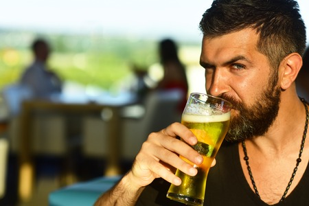 Brutal hipster bearded man sit at bar counter. Beer pubs and bars.
