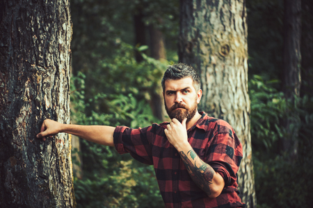Thoughtful bearded man in lumberjack shirt with tattoo on his arm wandering in forest. Lone hiker exploring wonders of nature, environment concept Фото со стока