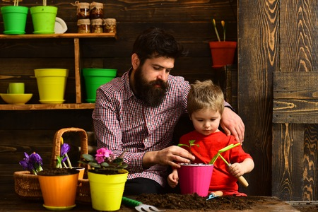 bearded man and little boy child love nature. happy gardeners with spring flowers. Family day. Greenhouse. Father and son. Flower care watering. Soil fertilizers. Beauty gardening Foto de archivo - 123083513