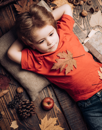 Cute little child boy are getting ready for autumn. Little child boy lies on a warm blanket dreams of warm autumn. Kid lies laying his hands behind head and resting on wooden floor in golden leaves. Banco de Imagens
