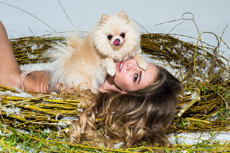 Sexy young model girl with perfect body in fashionable lace lingerie lying in a huge nest, full of feather with dog. Small cute dog and sexy woman.