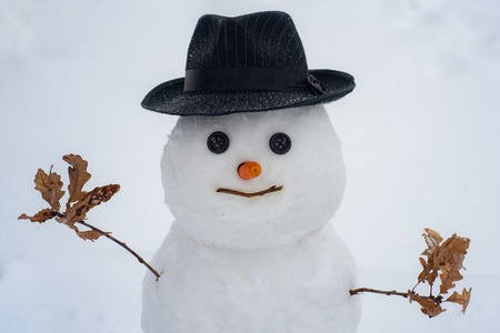 Funny snowman in stylish hat and scarf on snowy field. New year concept. Cute little snowman outdoor. Christmas snowman on white snow background. Happy new year. Standard-Bild - 123641624