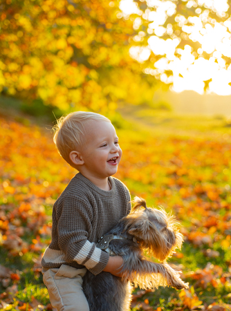 Autumn kids. Beautiful little kid playing with her yorkshire terrier in park. Enjoy the autumn with your friend. Real Childrens emotions.
