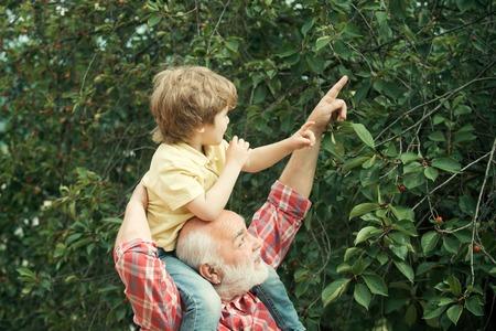 Generation. Alt und Jung. Großvater und kleiner Enkel spielen im Park. Großvater, der seinen Enkel auf Schultern trägt.