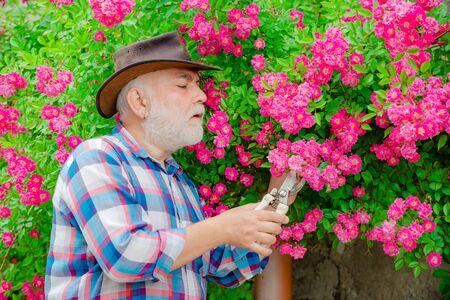 Happy farmer in cowboy hat having fun on field. Retirement planning. Grandfather. Gardener cutting flowers in his garden.