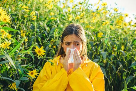Topinambur blüht. Serviette für laufende Nase. Frau mit gelber Jacke. Pollenallergie, Mädchen, das in ein Blumenfeld niest.