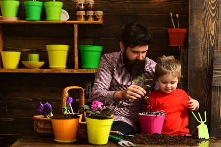 bearded man and little boy child love nature. happy gardeners with spring flowers. Family day. Greenhouse. Father and son. Flower care watering. Soil fertilizers. flower bed