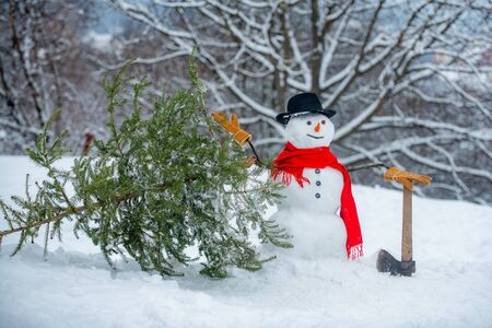 Snowman Woodcutter with axe in the winter forest. SnowMan is going to cut a christmas tree. Snowman with axe is carrying christmas tree in the wood.