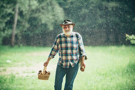 Grandfather with basket of mushrooms and a surprised facial expression. Mushroom hunting. Old bearded mushroomer in summer forest.