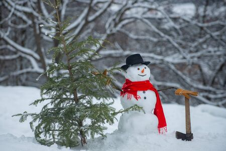 Snowman with axe is carrying christmas tree in the wood. Snowman with freshly cut down christmas tree in forest. Young snowman lumberjack bears fir tree in the white snow background. Stock Photo
