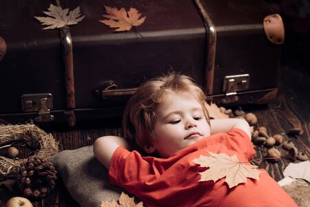 Blonde little boy resting with leaf on stomach lies on wooden floor in autumn leaves. Kid playing in autumn. Little child boy lies on a warm blanket dreams of warm autumn.