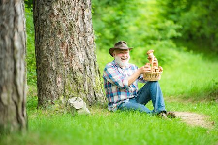 Happy man holding a freshly picked mushroom. Gathering Wild Mushrooms. Grandfather with basket of mushrooms and a surprised facial expression.