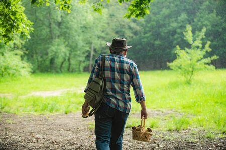 Old man walking. Grandpa Pensioner. Senior hiking in forest. Stock fotó