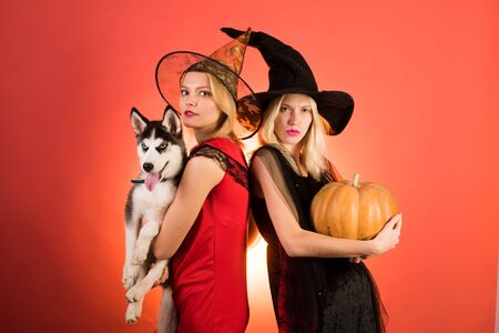 Two happy young women in black and red dresses, costumes witches halloween on party over orange background. Two beautiful blonde women in carnival costumes. Festive halloween design. Фото со стока